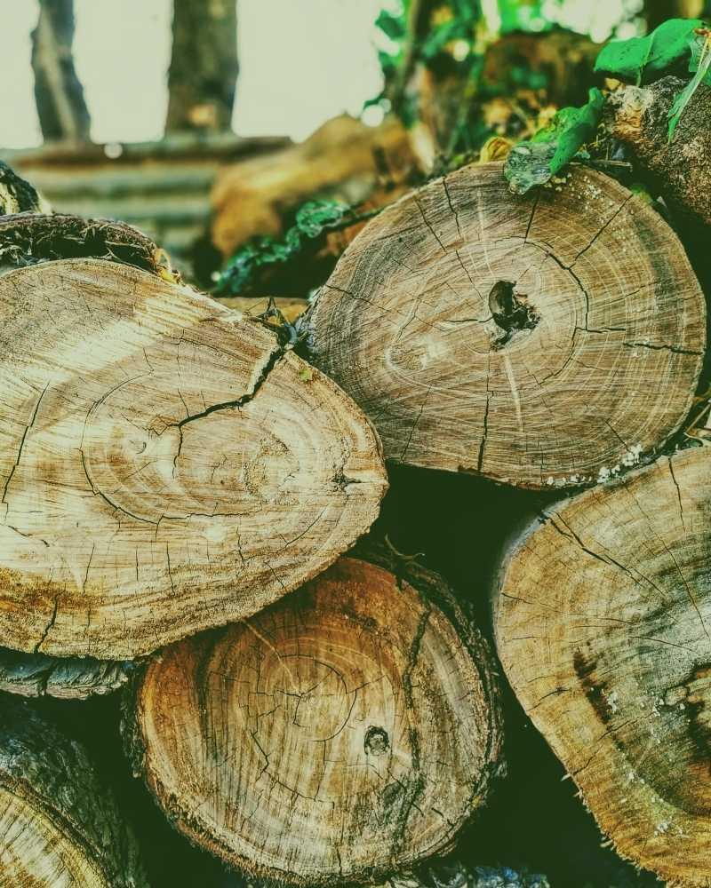 durham nc wood disposal near me