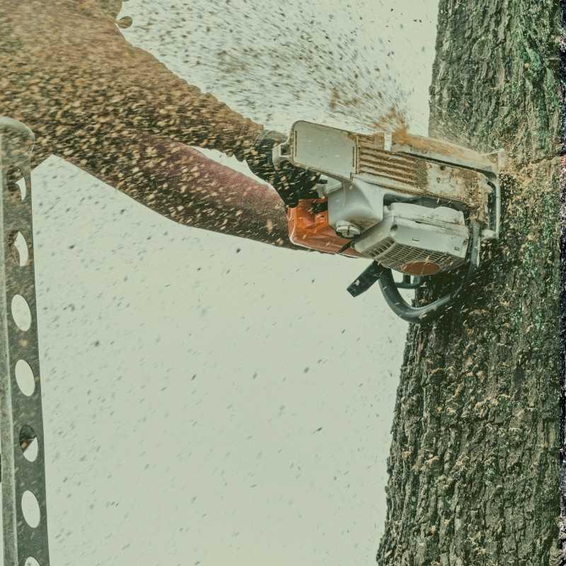 butner tree service